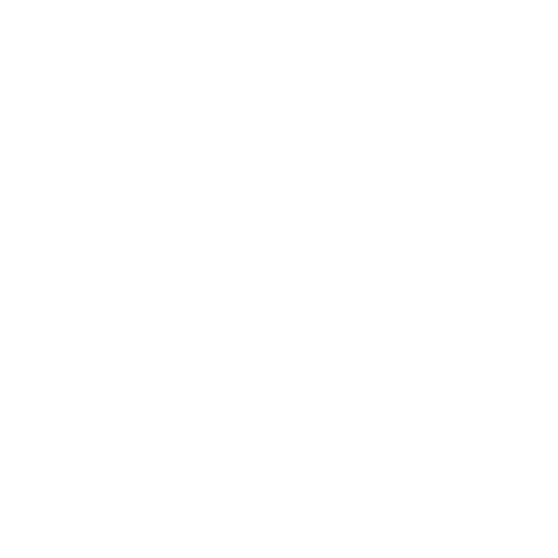 Partner Schleswig Holstein Logo